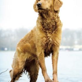 Spaß im Wasser, aber trotzdem Vorsicht